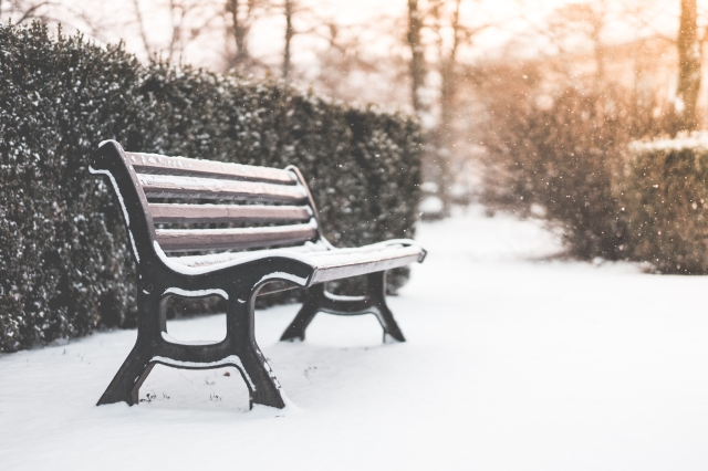 bench-in-a-park-and-snowy-weather-picjumbo-com
